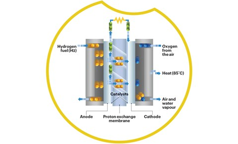 How hydrogen cells work