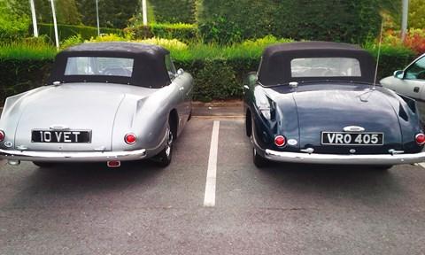 Nice pair of Bristols