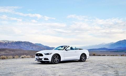 Mustang Cali