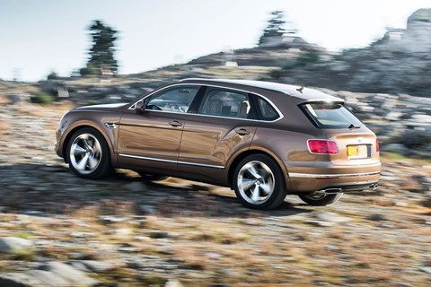 Roaming wild: the Bentley Bentayga