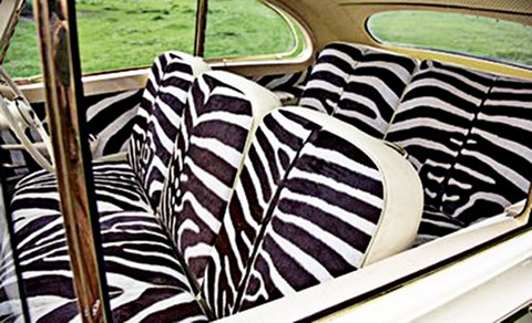 The zebra-skin back seat