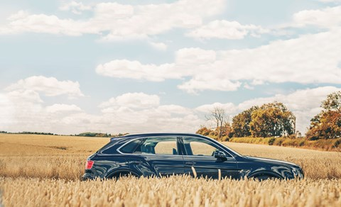 Bentley Bentayga hiding in a cornfield. Prices from £162,700