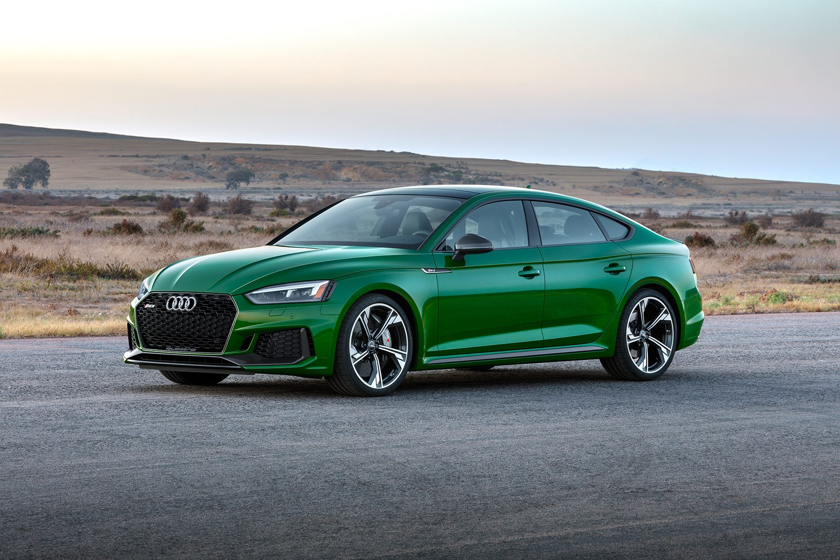 Audi RS5 Sportback turns up the torque