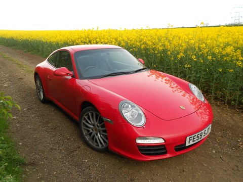 Guards Red 911 in rape yellow field