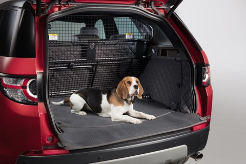 Best cars for dogs, cats and other pets 2020
