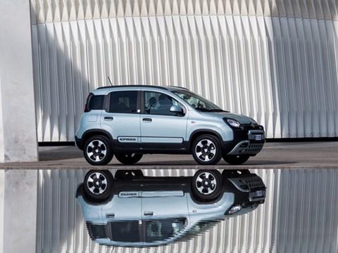 Fiat Panda Cross static