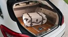 Auto-close tailgate is standard on CLS Shooting Brake