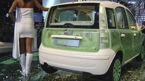 Fiat Panda Aria And Grande Punto Abarth Ss Concepts Car Magazine